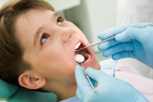 licensed dentist giving cleaning service photo